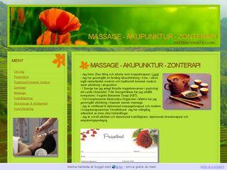 akupunktur.n.nu
