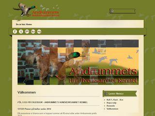 Earlier screenshot of andrummets.se