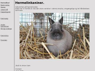 dvaergkanin.dk