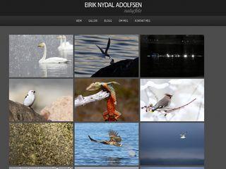 Earlier screenshot of eirikadolfsen.no