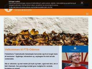 fts-odense.dk