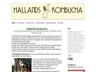 Earlier screenshot of hallandskombucha.se