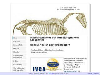 hastochhundkiropraktor.se