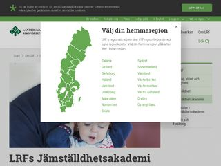 jamstalldhetsakademin.se