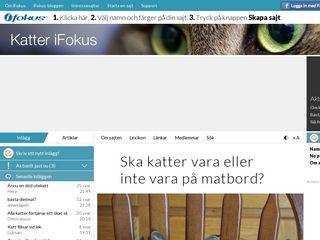 katter.ifokus.se