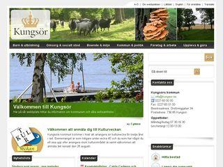 Earlier screenshot of annalisahedmansbarnfond.se