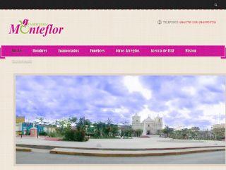 monteflorfloristeria.com