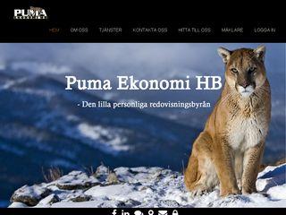 Earlier screenshot of pumaekonomi.se
