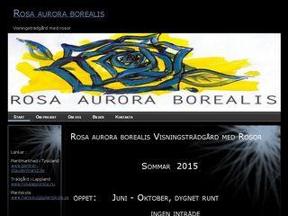 rosaauroraborealis.se