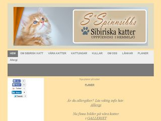 spinnsibbs.se