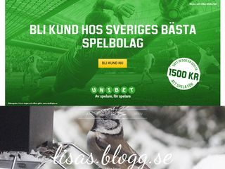 Earlier screenshot of tantlisa.blogg.se