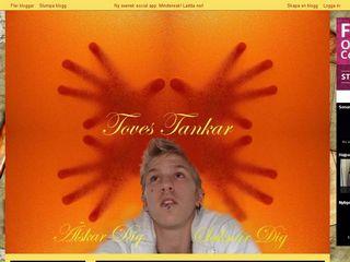toves-tankar.bloggplatsen.se