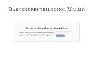 Earlier screenshot of bartenderutbildningmalmö.se