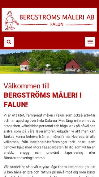 Mobile preview of bergstromsmalerifalun.se