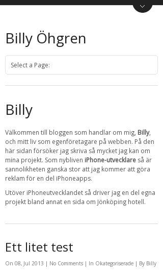 Mobile preview of billyohgren.com