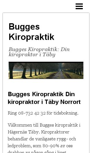 Mobile preview of buggeskiropraktik.se