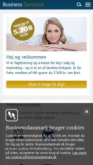 Mobile preview of businessdanmark.dk
