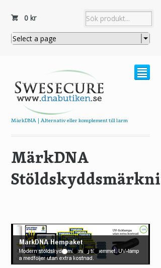 Mobile preview of swesecure.se