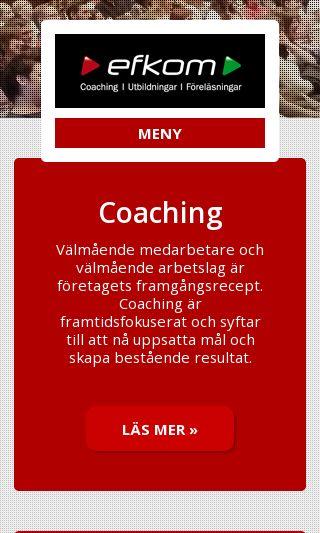 Mobile preview of efkom.se