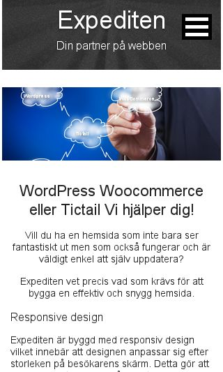 Mobile preview of expediten.se