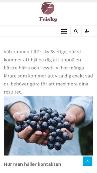 Mobile preview of frisky.se