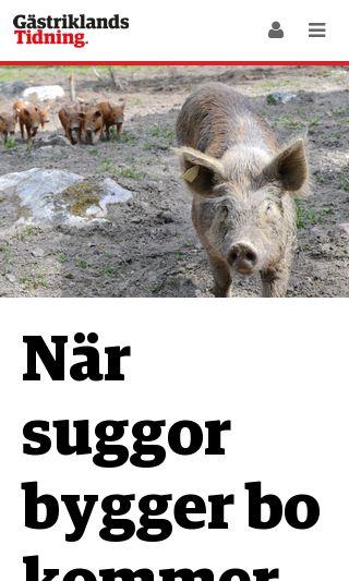 Mobile preview of gastriklandstidning.se