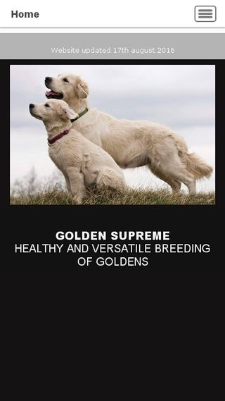 Mobile preview of golden-supreme.dk