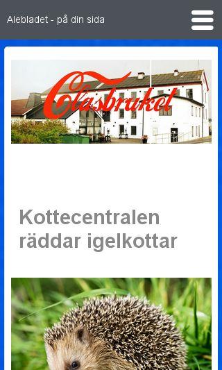Mobile preview of gotaalvdalen.se