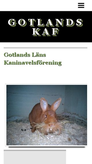Mobile preview of gotlandskaf.n.nu