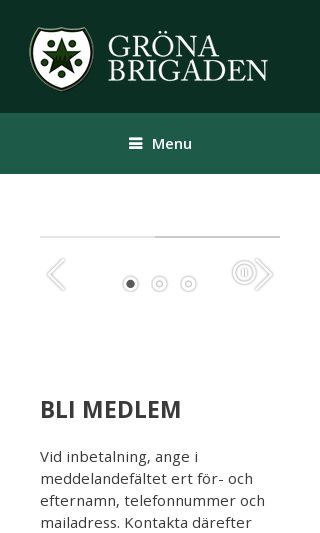 Mobile preview of itsallabouttaif.se