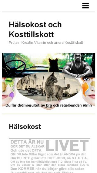 Mobile preview of halsokost.n.nu