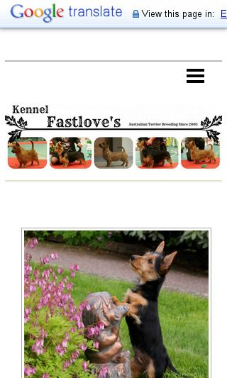 Mobile preview of kennelfastloves.se