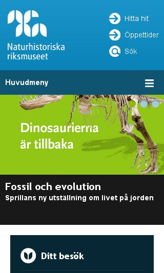 Mobile preview of nrm.se