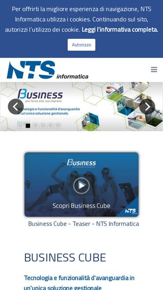 Mobile preview of ntsinformatica.it