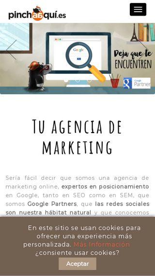 Mobile preview of pinchaaqui.es