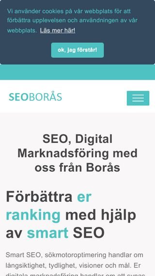 Mobile preview of seoboras.se