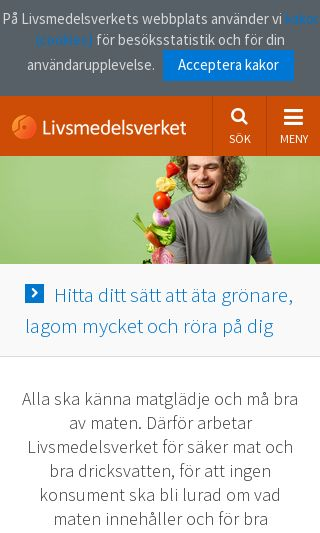 Mobile preview of slv.se