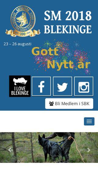 Mobile preview of sm2018.se