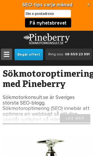 Mobile preview of seocert.se