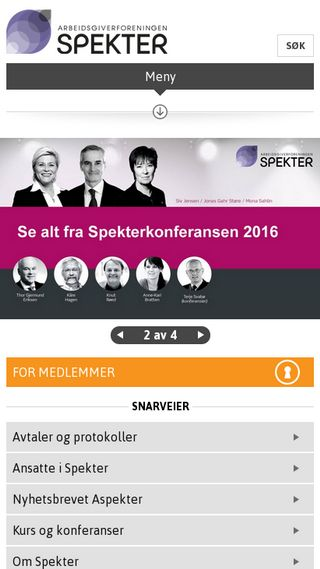 Mobile preview of spekter.no