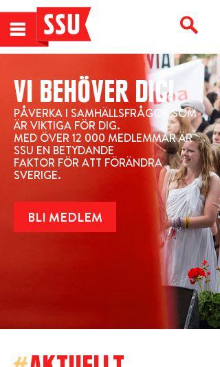 Mobile preview of boraspride.se