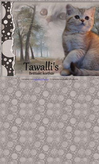 Mobile preview of tawallis.se