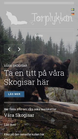 Mobile preview of torplyktan.se
